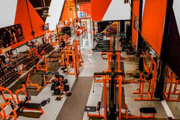 Templo Gym Ves Publicidad4