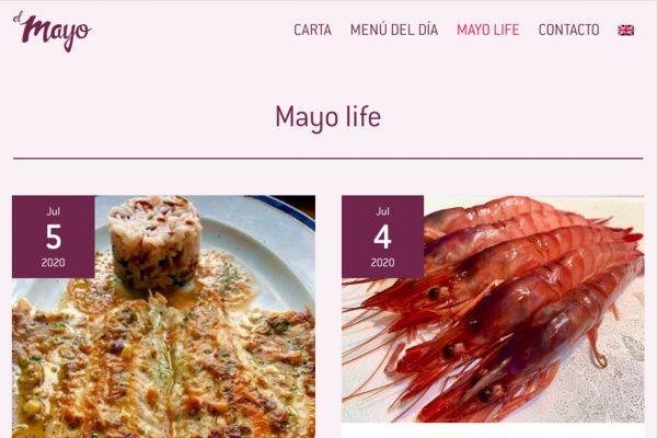 Web Mayo4